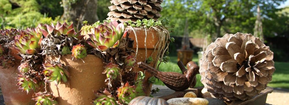 Berger paysage saumur paysagiste saumur cr ations for Entretien jardin 41